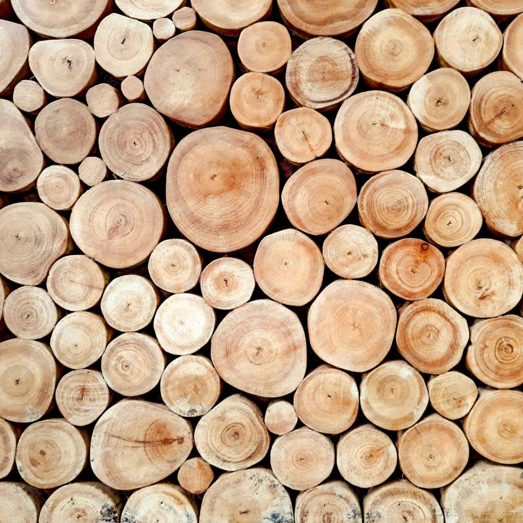 Holz Verarbeitung